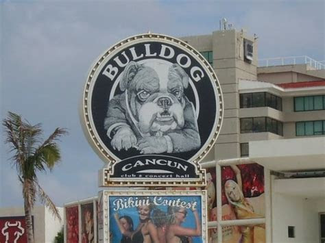 Bulldog Cafe (Cancun, Mexico): Top Tips Before You Go