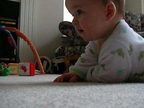 Peter Crawling Thumbnail.jpg