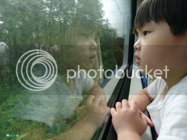 photo 20_zpszin12apn.jpg