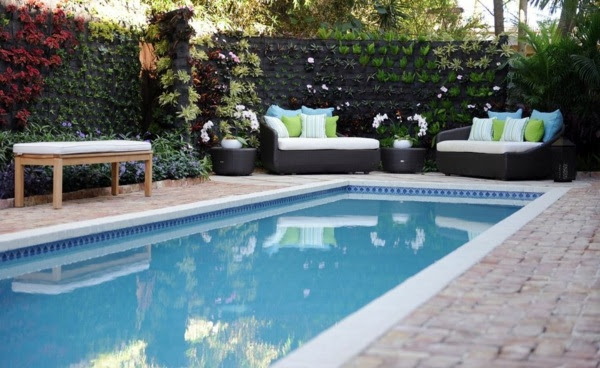 vertical garden next to the swimming pool brings more green into your home 0 131