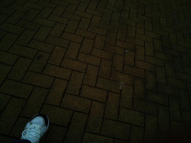 PIC_1355