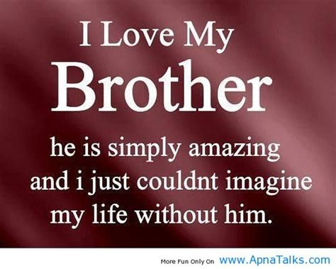 Amazing Little Brother Quotes