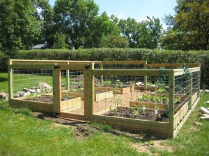 Deer Resistant Vegetable Garden Design Plan Garden Design Ideas