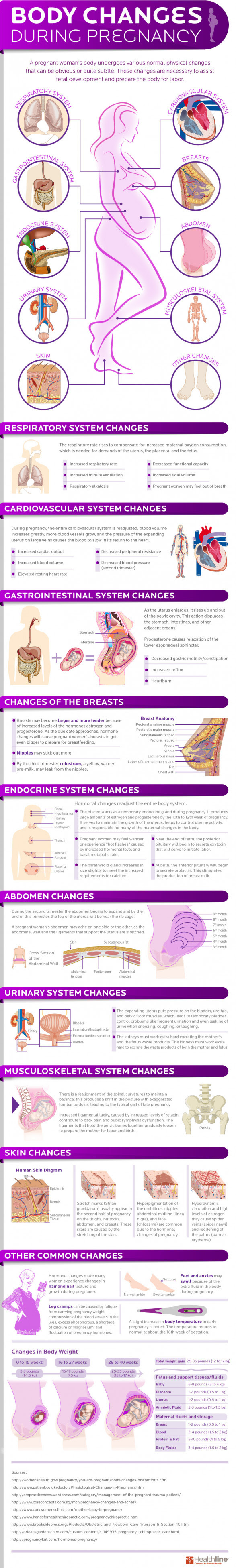 Body Changes During Pregnancy