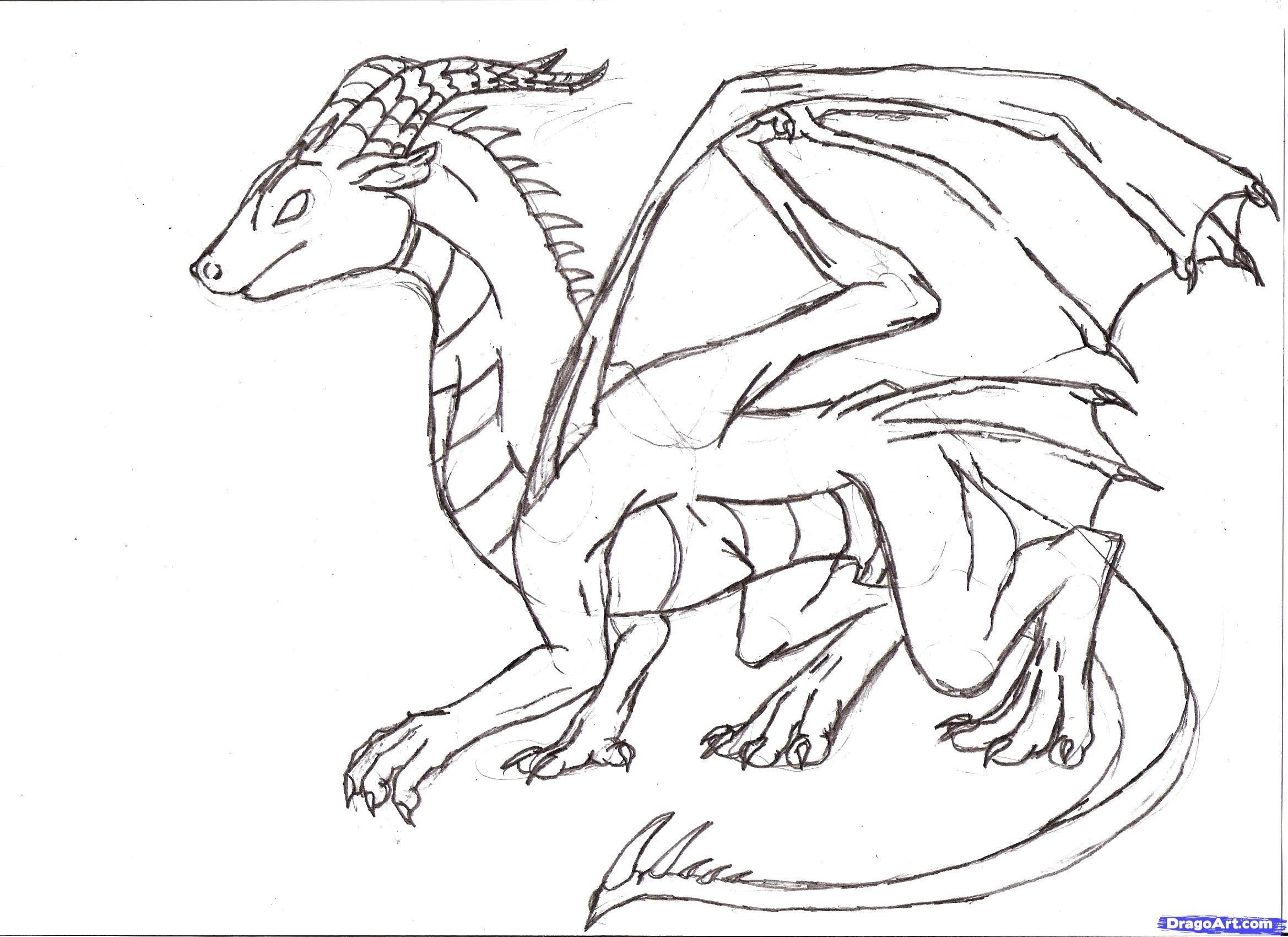 Full Body Art Dragon Drawing Drawing Ideas Collection