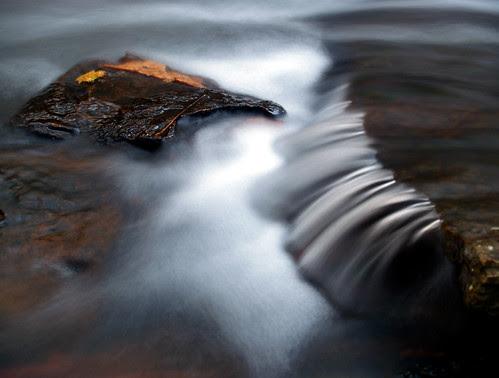 Collins Creek up-close