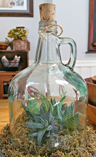 DIY Cloche Garden From A Repurposed Bottle