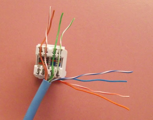 female rj45 connector wiring diagram image 7