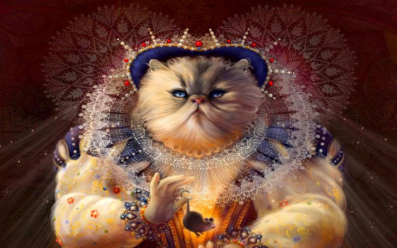 HD Queen Of Cats Wallpaper | Download Free - 82783