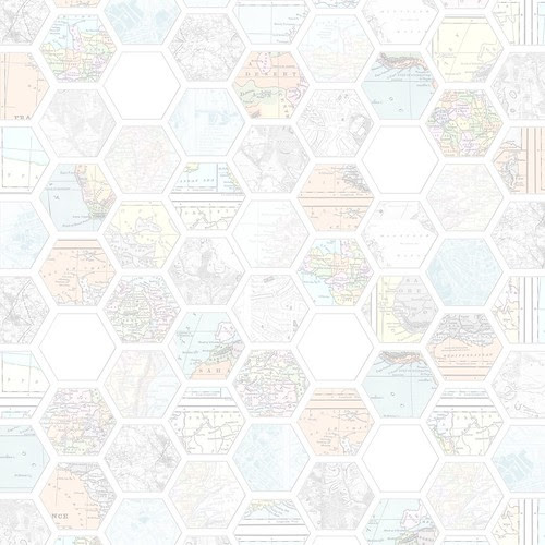 Map_hexagon_LIGHT_12_and_a_half_inch_300dpi_melstampz