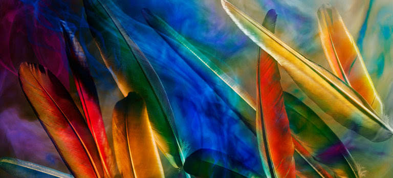 Perfectcolor