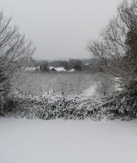 photo Snowday001.jpg