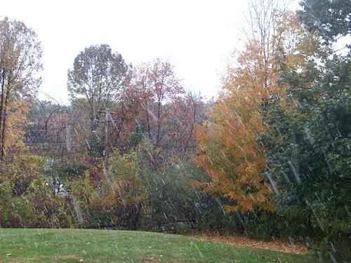 Snow_101809