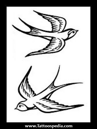 Sparrow Drawing Tattoo At Getdrawingscom Free For Personal Use
