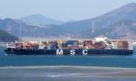 MSC Vittoria - Reprodução