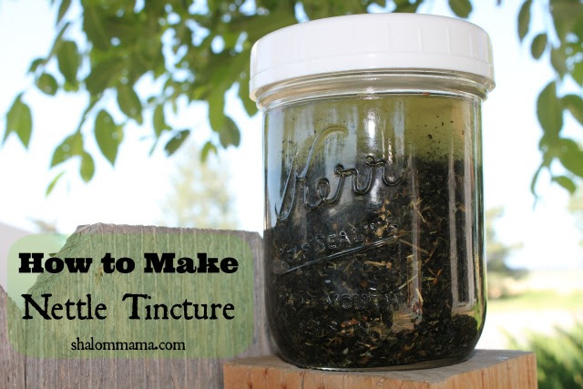 How to Make Nettle Tincture