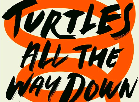 Výsledek obrázku pro turtles all the way down