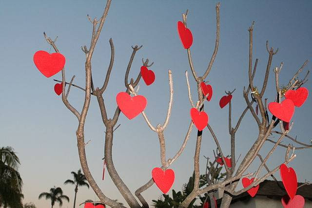 Como Hacer Una Carta De Amor Consejos Tips E Ideas Originales