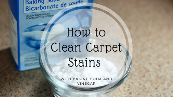 How To Clean Carpet Stains With Baking Soda And Vinegar Bear Water