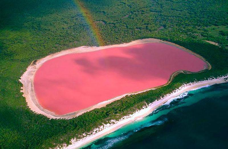 """Résultat de recherche d'images pour """"lac rose"""""""