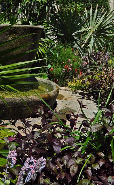 Teacup Garden (4)