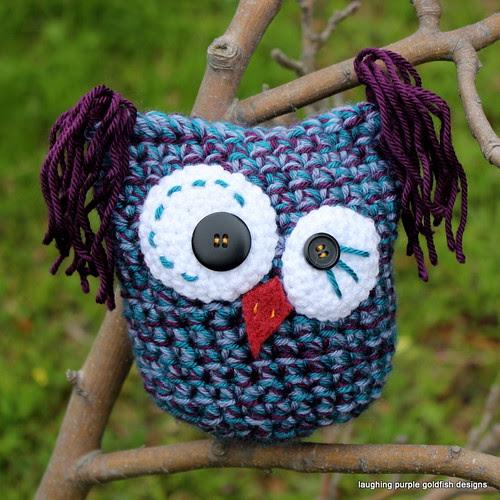 Calypso the Kooky Owl
