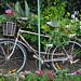 San Diego - Bike