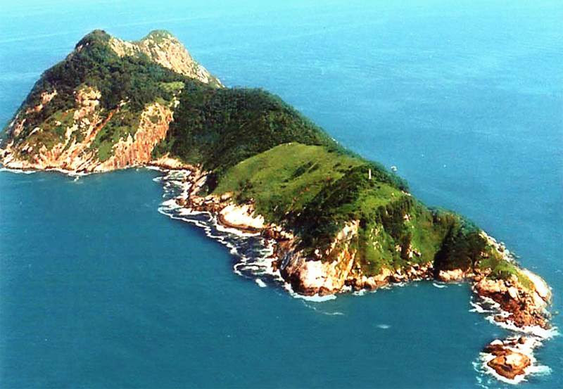 Image result for snake island brazil