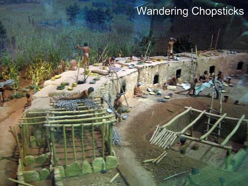 13 Chapin Mesa Archeological Museum - Mesa Verde National Park - Colorado 5