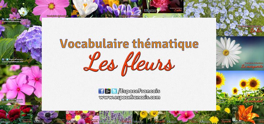 Kwiaty - nagłówek - Francuski przy kawie