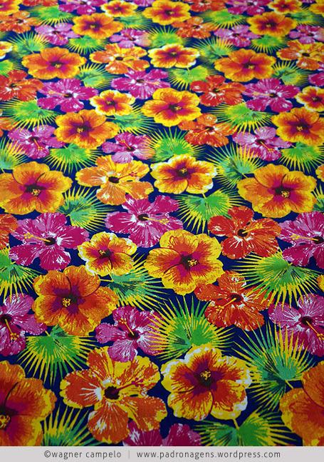 hibisco tropical