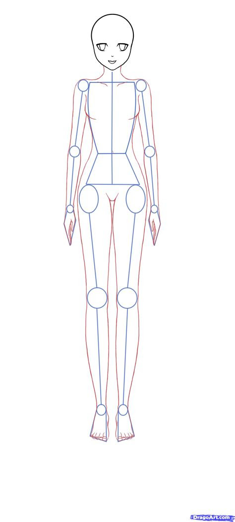 body proportions   draw   draw  pinterest