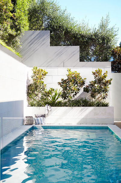 Contemporary Pool by Harrison's Landscaping