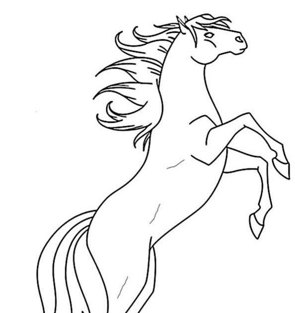ausmalbilder pferde bauernhof  malvorlagen tiere