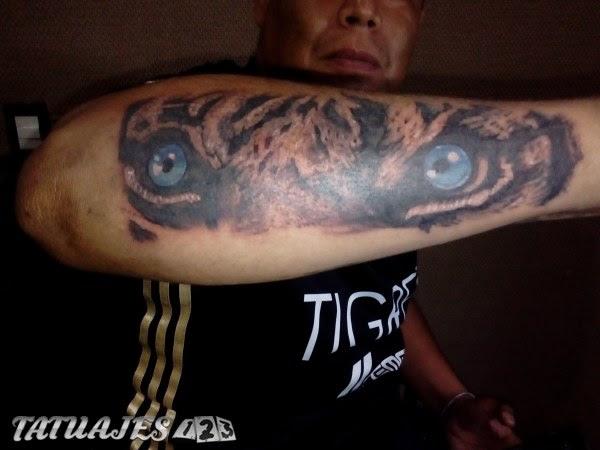 Ojo De Tigre Tattoo Tatuajes 123
