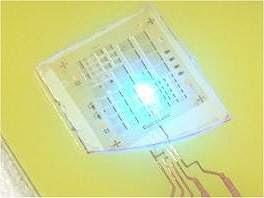 Vagalumes ajudam a tornar LEDs mais brilhantes