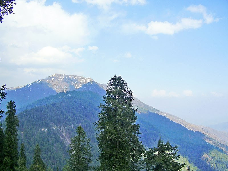 File:Miranjani from Nathiagali.JPG