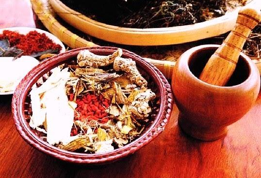 Лечение почек почечный чай