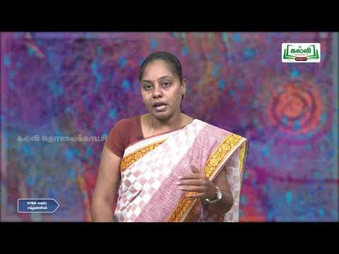 11th Nutrition புற்றுநோய்க்கான திட்ட உணவு அலகு 12 Q And A Kalvi TV