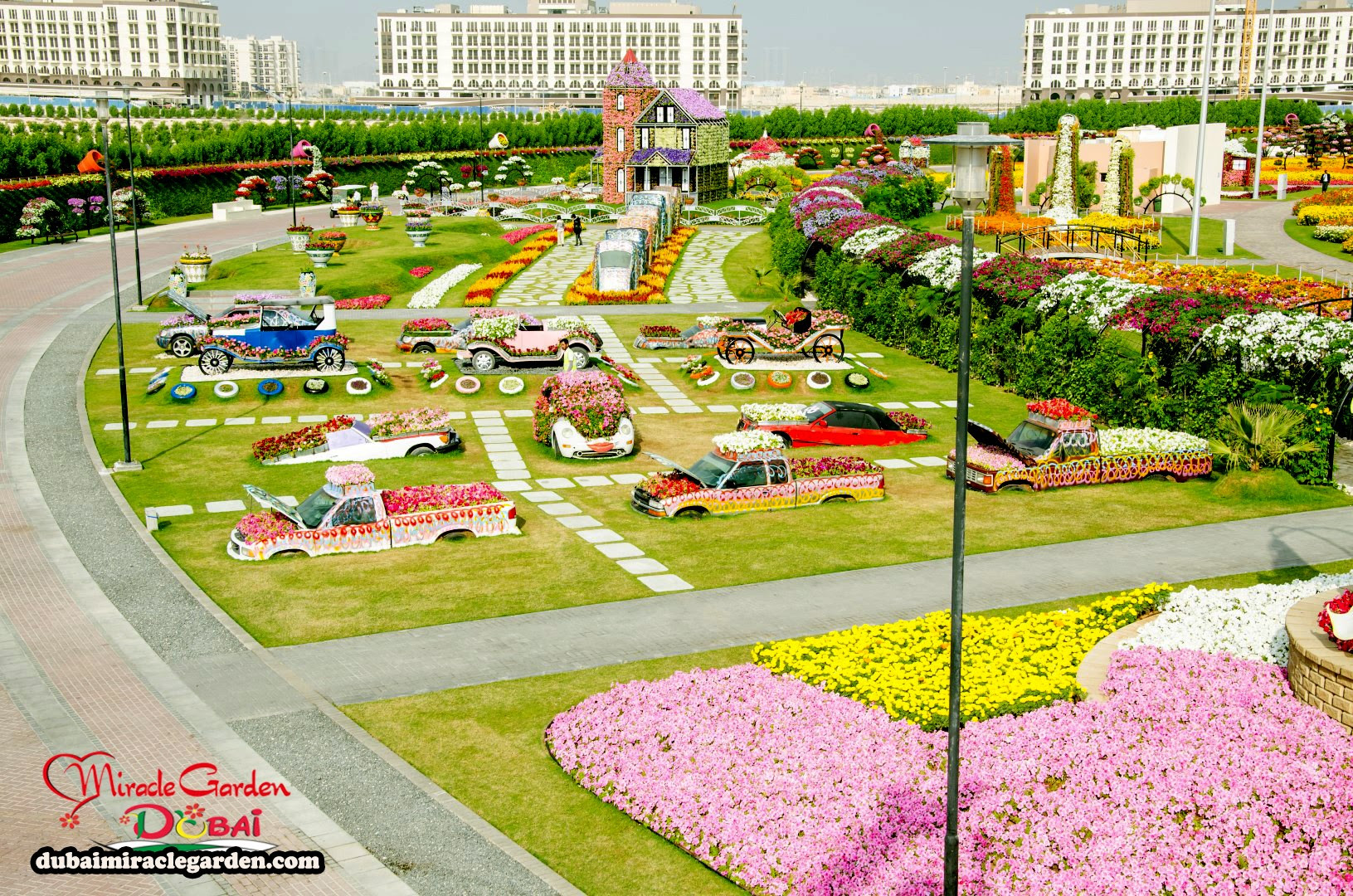 Dubai Miracle Garden 21