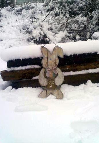 SnowBunny_4111