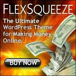 FlexSqueeze - The Ultimate Money Blog Theme for Wordpress!