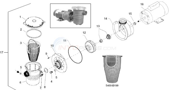 35 Waterway Pump Parts Diagram