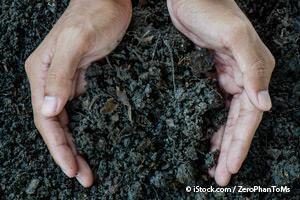 http://media.mercola.com/ImageServer/Public/2016/May/regenerating-soil.jpg