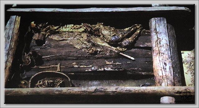 11 Conferencia de Hermann Parzinger sobre las excavaciones de Soto de Bureba