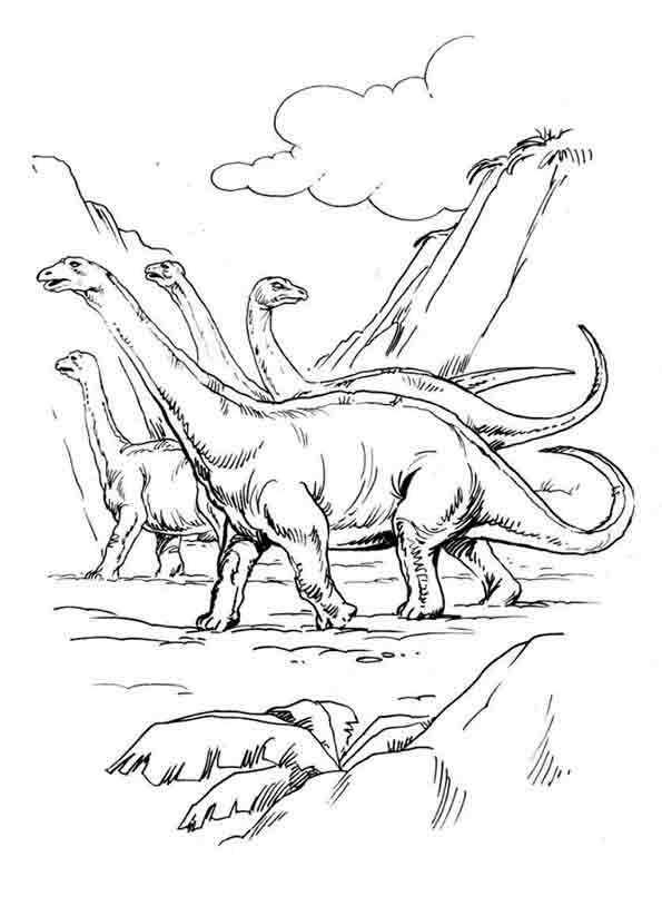Ausmalbilder Dinosaurier 7 Ausmalbilder Tiere