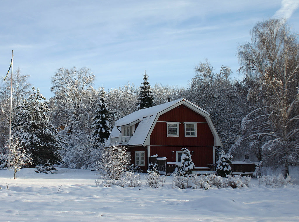 Swedish Winter