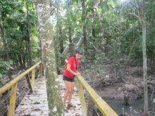 PARQUE MINDU - Manaus (AM)