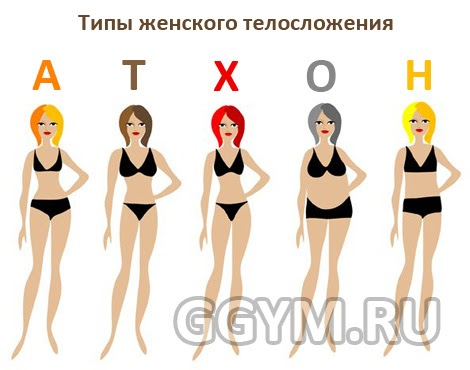 Секс типы женской фигуры