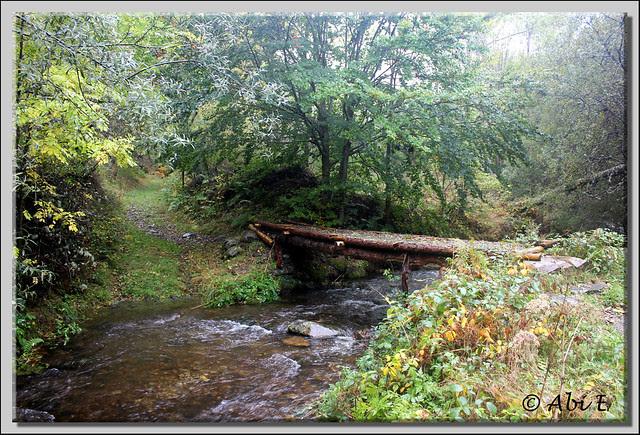 6 río Urbión